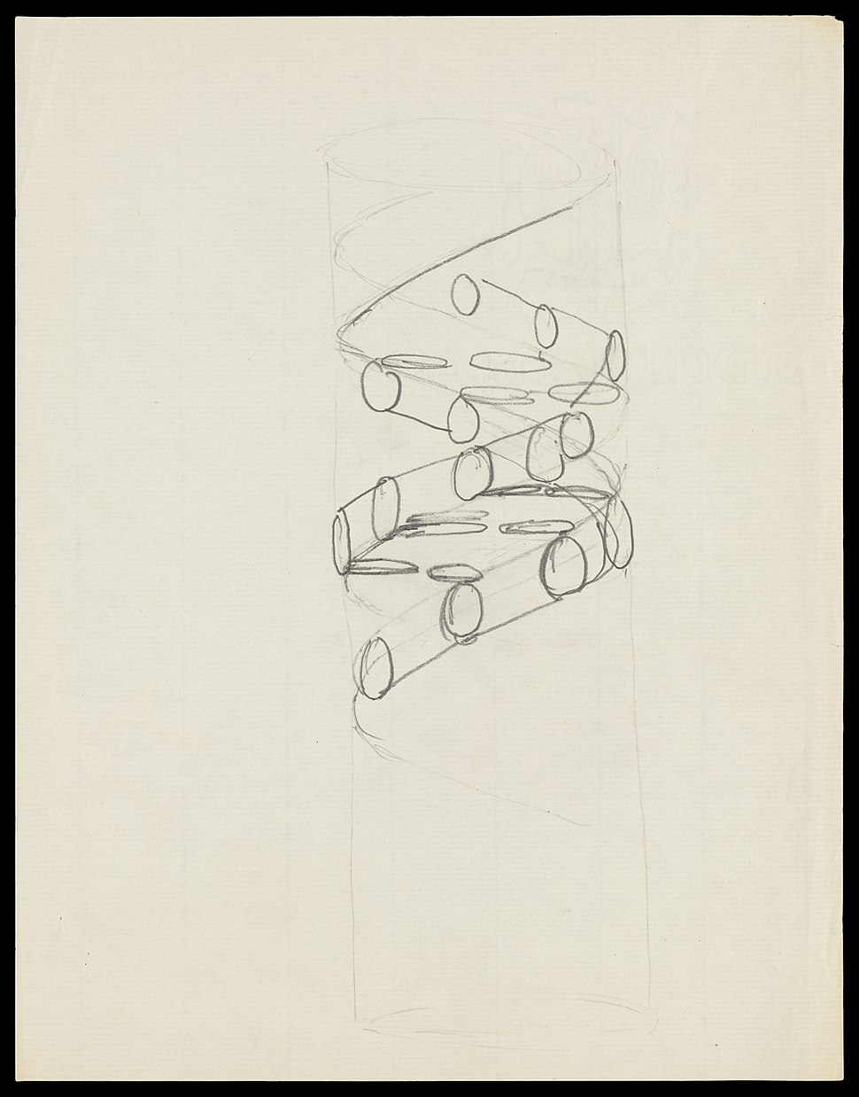 Pencil sketch of the DNA double helix by Francis Crick Wellcome L0051225