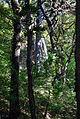 Perchtoldsdorf Kammerstein Mauer im Wald.jpg