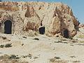 Perhaps for digging burrows in Tunisia.jpg