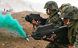 FN F2000 - Peruvian Marines armed with standard configuration F2000s in July 2010.