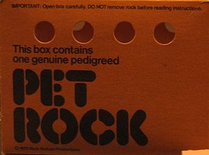 "Pet Rock - The Pet Rock ""Pet Carrier"", which doubled as its packaging"