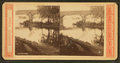 Philadelphia. (Bridge over the Schuylkill River), from Robert N. Dennis collection of stereoscopic views.png