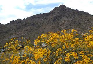 Piestewa Peak mountain in Phoenix, Arizona