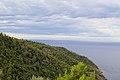 Pinete sul promontorio - panoramio.jpg