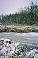 Pingsdorfer See 1996 (LM23814).jpg