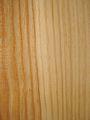 Pinus sylvestris wood2.jpg