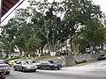Plaza Bolivar de la Ciudad de Tovar.jpg