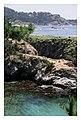 Point Lobos - panoramio - Vadim Manuylov.jpg