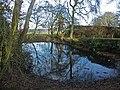 Pond, Bledlow Ridge - geograph.org.uk - 100946.jpg