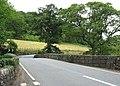 Pont Felinrhyd-fawr bridge on the A496 - geograph.org.uk - 509488.jpg