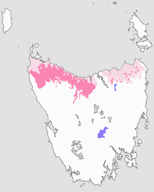 Population distribution map of the Tasmanian giant freshwater crayfish (Astacopsis gouldi).png