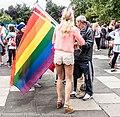Pride Festival 2013 On The Streets Of Dublin (LGBTQ) (9183775066).jpg