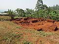 Production of mud bricks in Belo (2).JPG