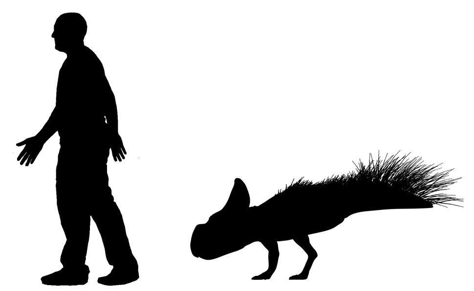 Protoceratops scale