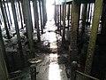 Pulau Ketam - Crab Island, Port Klang, Malaysia (37).jpg