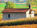 Puttigny la chapelle Sainte-Ursule.JPG