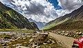 Pyala Lake road.jpg