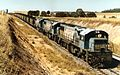 QR loco 2163 and two others haul a coal train away from Boundary Hill loading loop, ~1991.jpg