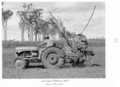 Queensland State Archives 4352 Cane planting at the Childers Soldiers Settlement 1950.png
