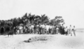 Queensland State Archives 5857 Residents of Yam Island 20 July 1911.png