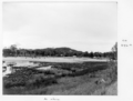Queensland State Archives 6551 Reclamation at Tallebudgera July 1959.png
