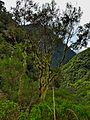 Réunion-0339.jpg