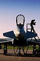 RAF Pilot Exiting Aircraft MOD 45157166.jpg