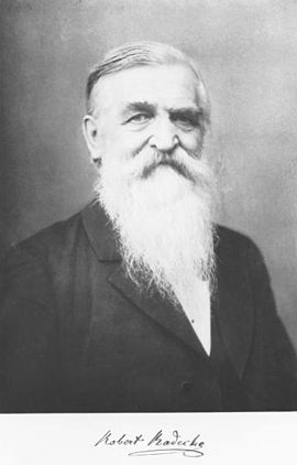 Robert Radecke