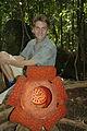 Rafflesia tuan-mudae.JPG