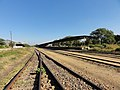 Railroad at Salima - panoramio (1).jpg