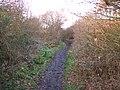 Railway path. - geograph.org.uk - 305231.jpg