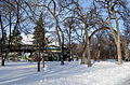 Rainbow Stage and timber arch in Kildonan Park, Winnipeg Manitoba.JPG