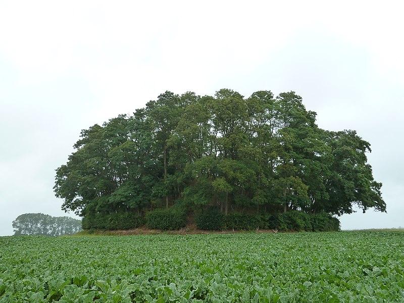 Tumulus d'Hottomont, Ramillies, Belgique