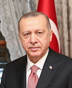 Recep Tayyip Erdoğan (cropped).jpg