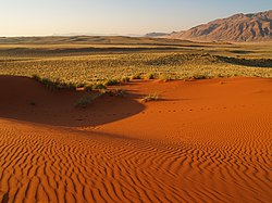ナミビア砂漠の砂紋