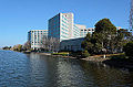 Redwood Shores Lagoon February 2013 002.jpg