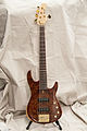 Regenerate M series 5 string bass (burl redwood).jpg