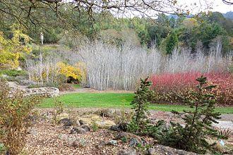 Regional Parks Botanic Garden - View of the Botanic Garden in November 2013