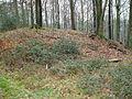 Ringwallanlage Burggraben1.jpg