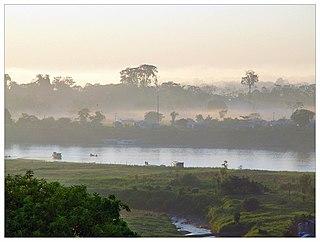 Juruá River river