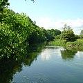 River Avon near Hale House - geograph.org.uk - 121198.jpg