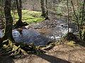 River Bovey, Parke - geograph.org.uk - 1209852.jpg