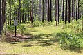 River Creek WMA another trail.jpg