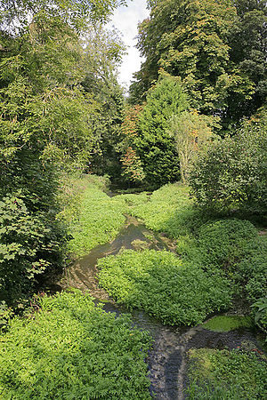 River Meon - Image: River Meon upstream, of the A32 roads bridge at Warnford geograph.org.uk 239505