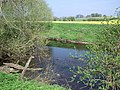 River Tees - geograph.org.uk - 401677.jpg