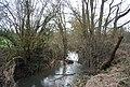 River Teise, Weir Field Shaw - geograph.org.uk - 1757449.jpg