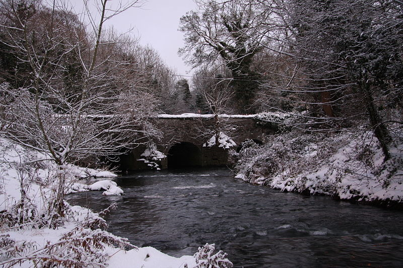 File:River Tolka at Waterville Park, Dublin..jpg