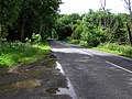 Road near Capecastle Wood - geograph.org.uk - 862030.jpg