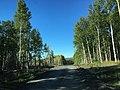Road to Tanana Dedication (29062750730).jpg