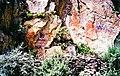 Rock carvings at base of Chagpori lo-res.jpg